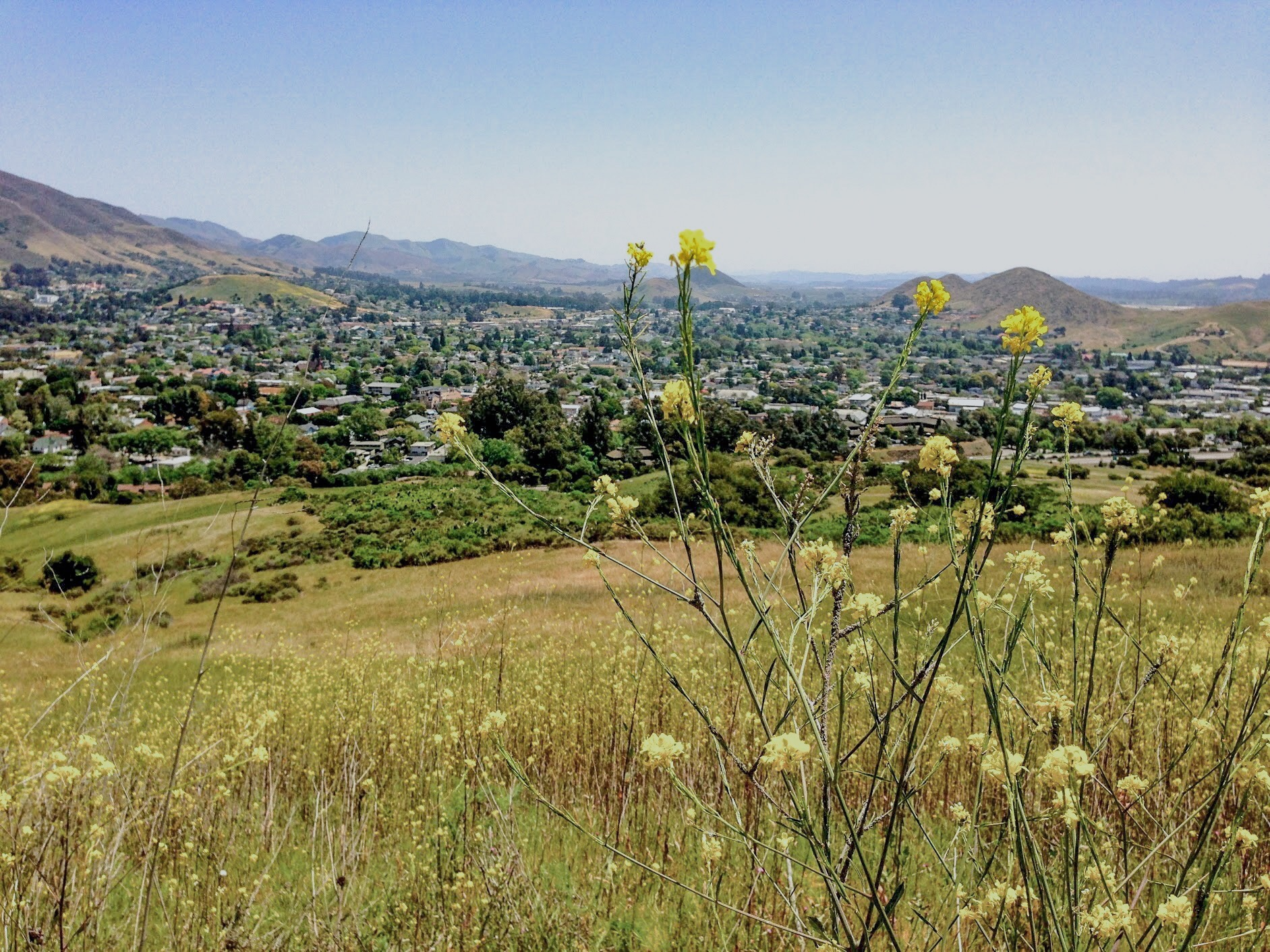 Take in the views of San Luis Obispo with a hike up Madonna Mountain.