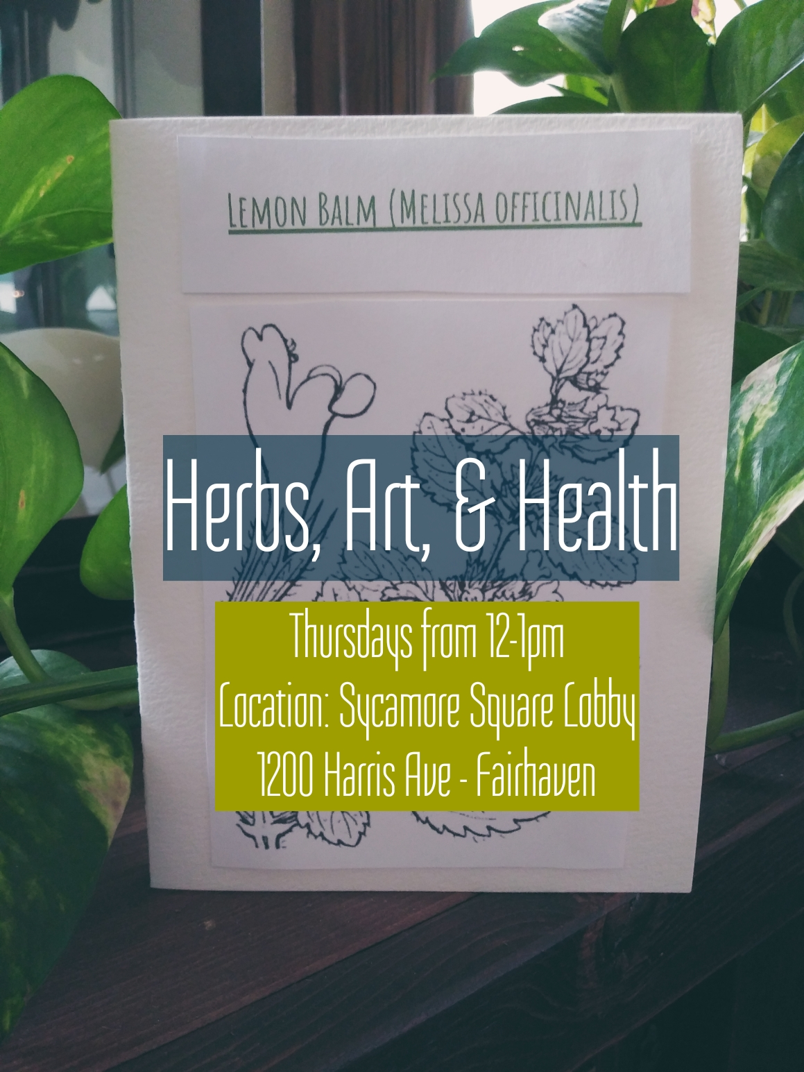 Join Dr. Carrie Wine each Thursday from 12 - 1 pm this summer to talk about medicinal herbs!