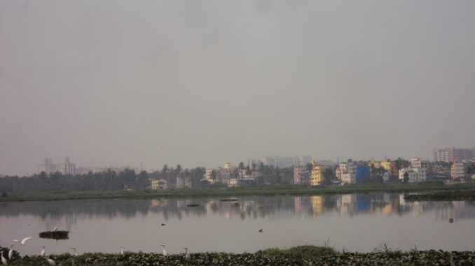 Long-neglected Varthur lake awaits rejuvenation - What was once a sprawling lake is currently in dire straits and in urgent need for resuscitation