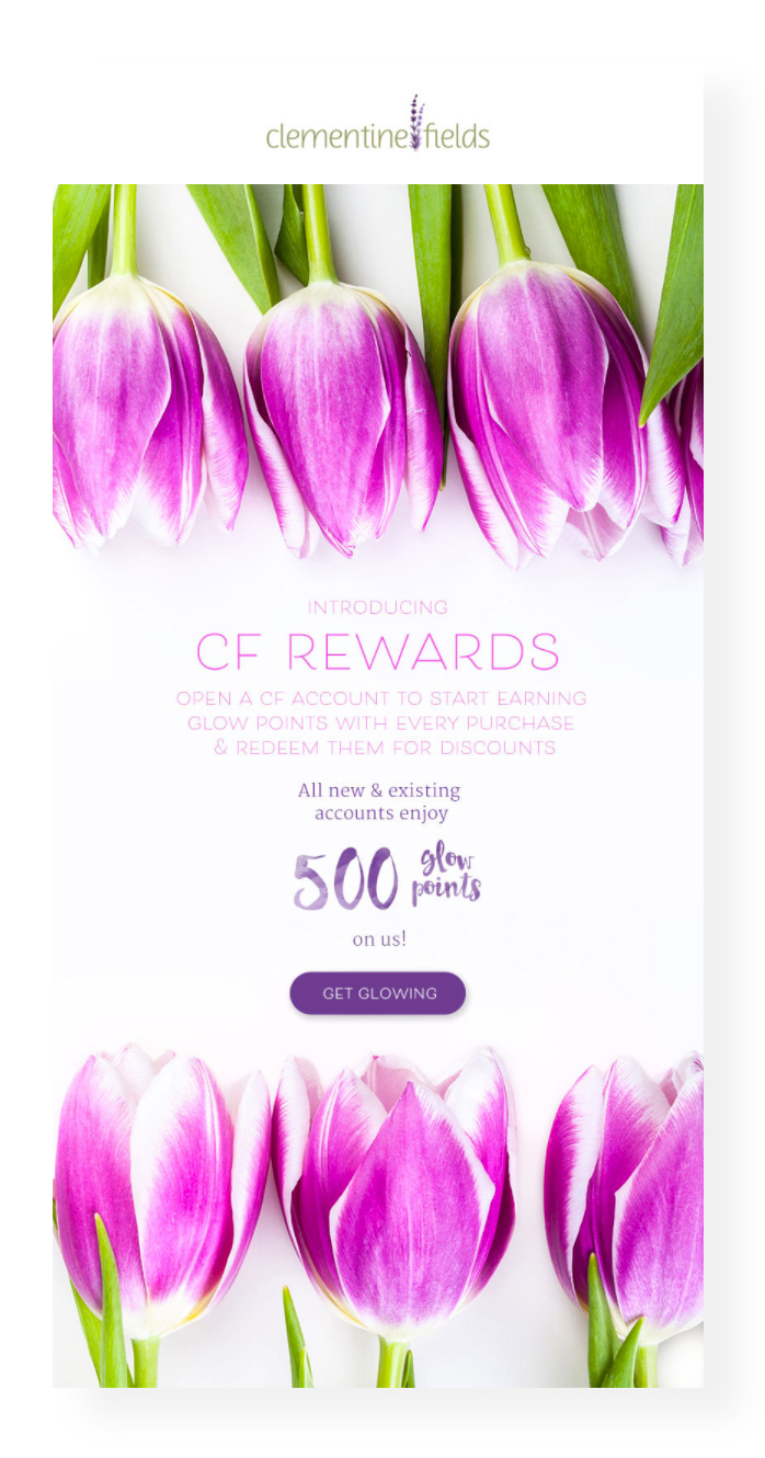 squarespace-email-tulips-clementinefields.jpg
