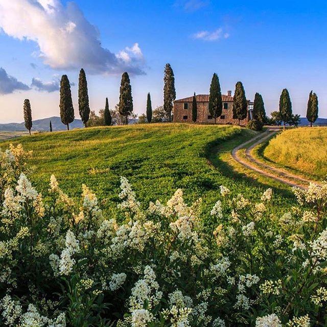 EDIT: LOPPUUNMYYTY  Toscanan maalausmatkalle on vapautunut yksi peruutuspaikka. Laita minulle viesti, jos haluat kuulla lisää.