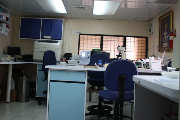 Laboratorio - Analíticas