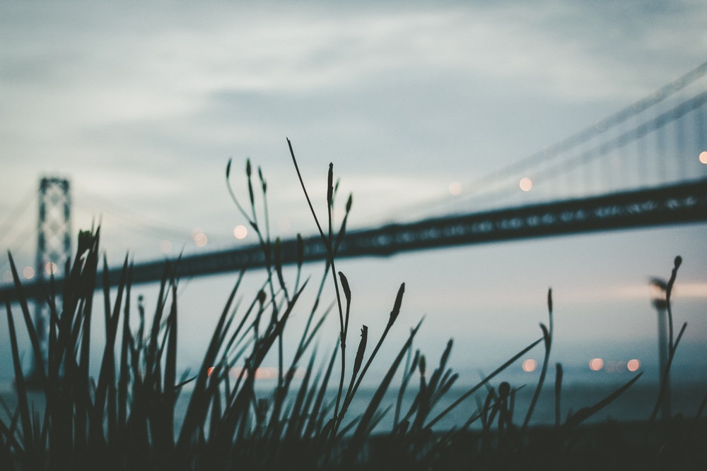 All photos courtesy of the talented photographers at unsplash.com