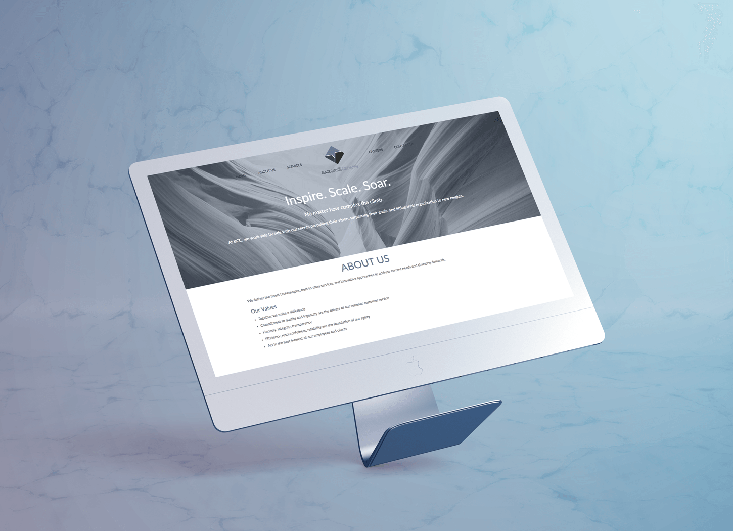 Website design for Black Canyon Consulting -  click  to see whole design