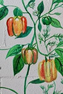 pepper_wall.jpg