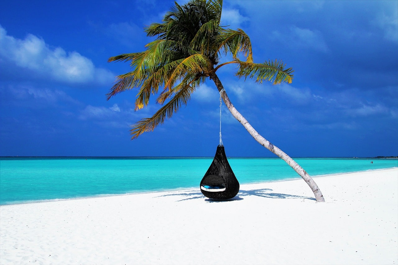 a black hammock hangs from a single palm tree leaning across a white sandy beach fringed by turquoise sea - how to find fulfilment in your life