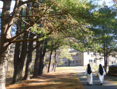 Nuns walking from home page slider.png