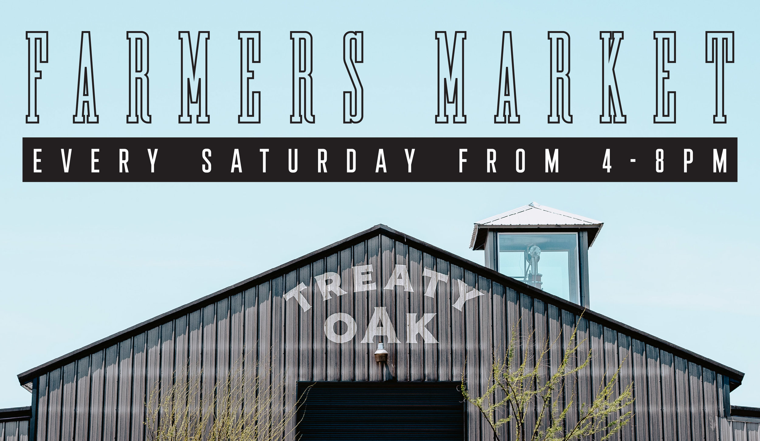 farmers Market-01.jpg