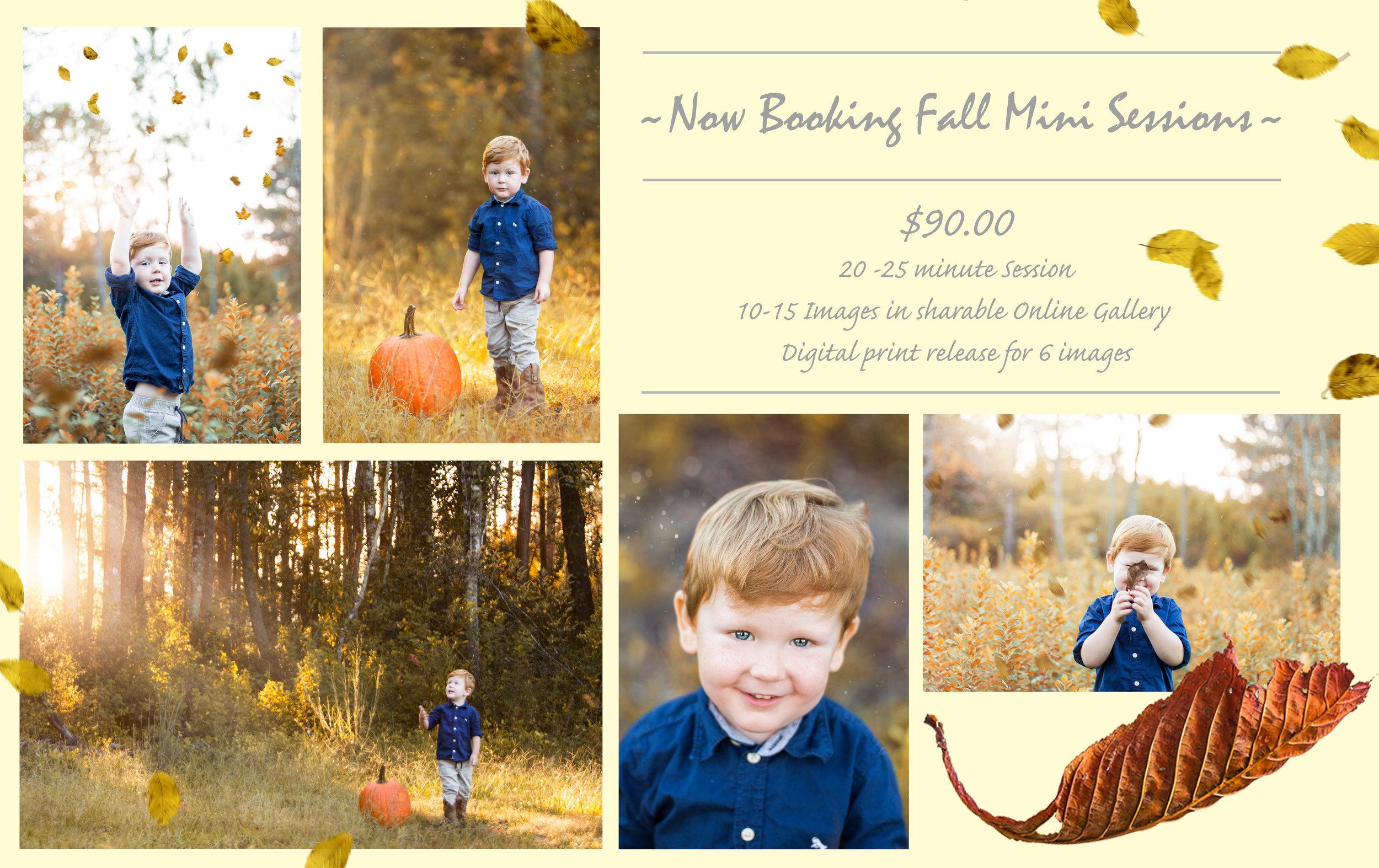 fall mini.jpg