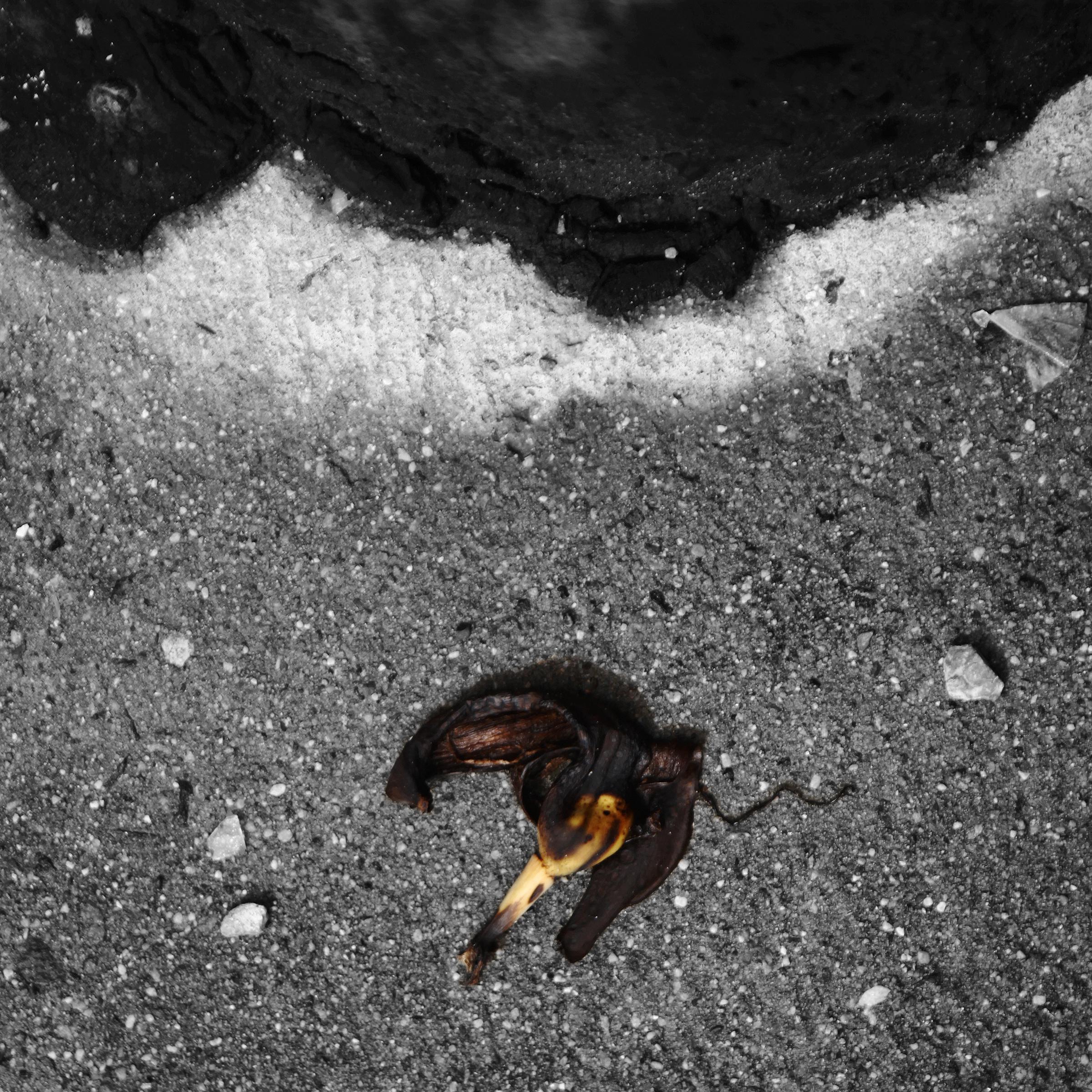 Banana_black.jpg