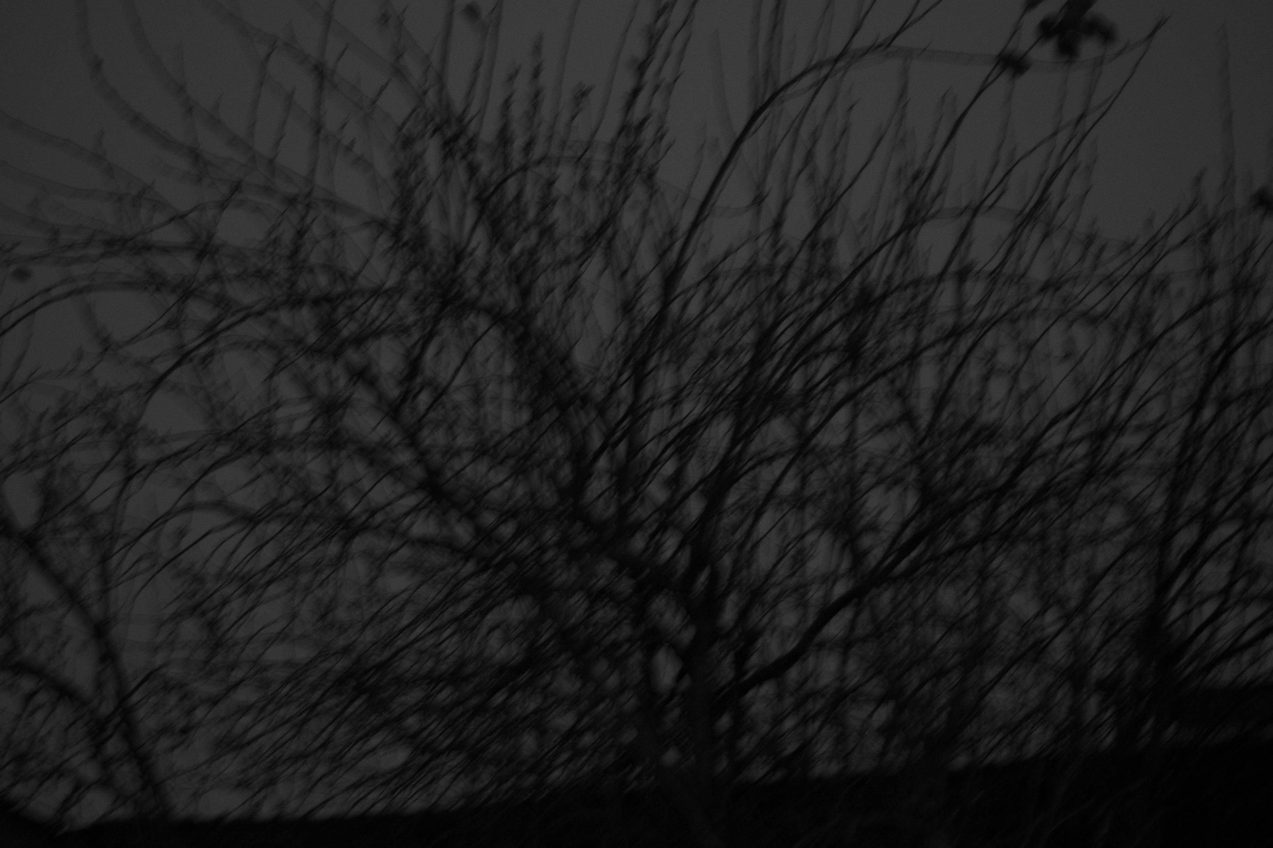 fine art florianópolis arte fotografia fotógrafo floripa quadros