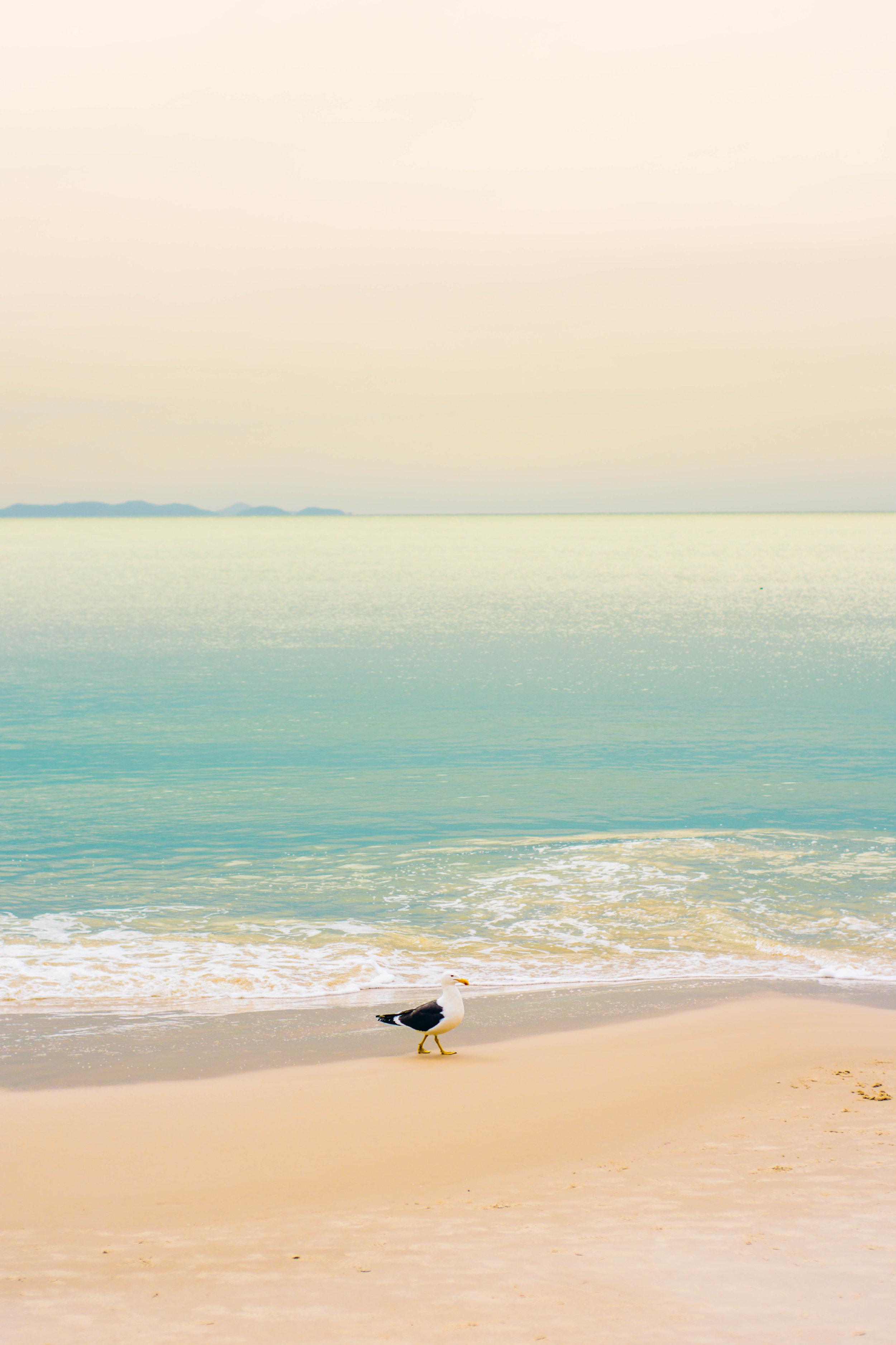 fine art florianópolis decoração arte quadros fotografia mar canasvieiras