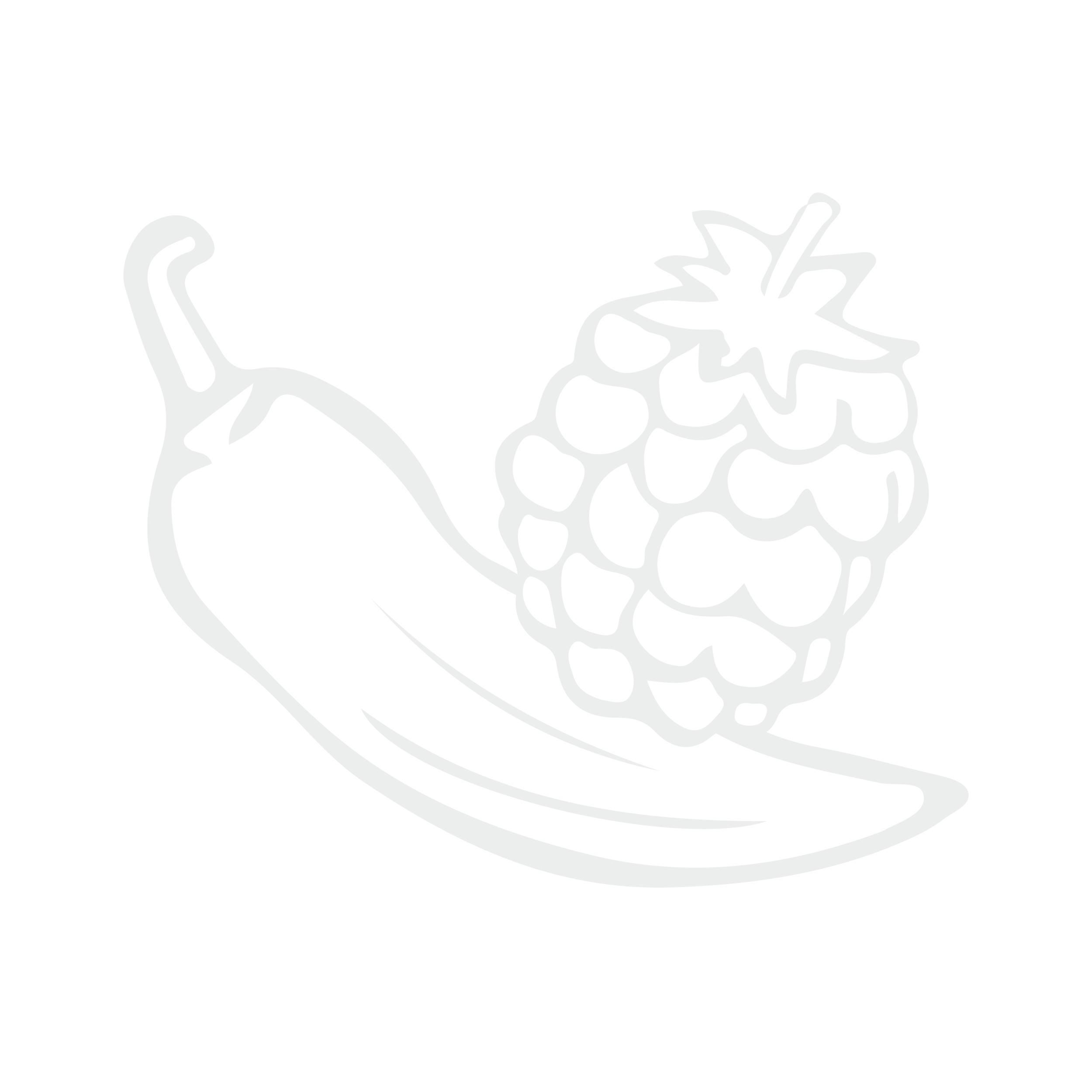 Salsas de ají con frutas -