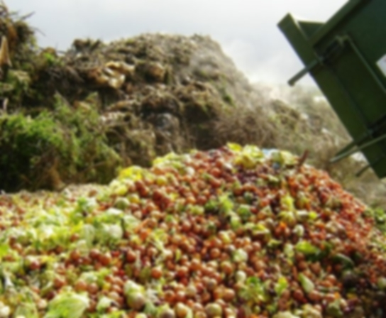 Reducing Food Wastage - 360 films showing the key reasons for food wastage both in developed and emerging countries