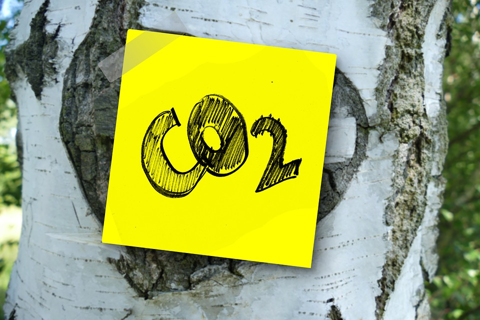 50 Ideas For Shrinking Your Carbon Footprint - Use our calculatorsto look at the size of your emissions. As well as offsetting them right now, you can take other measures to [...]