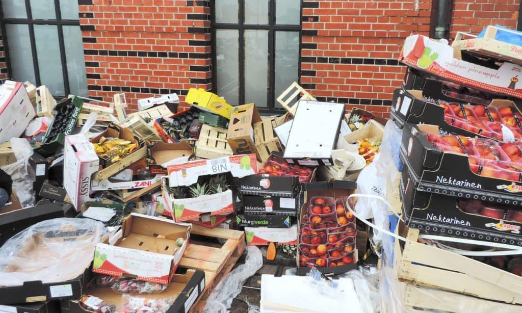59 Organizations Fighting Food Loss and Waste -