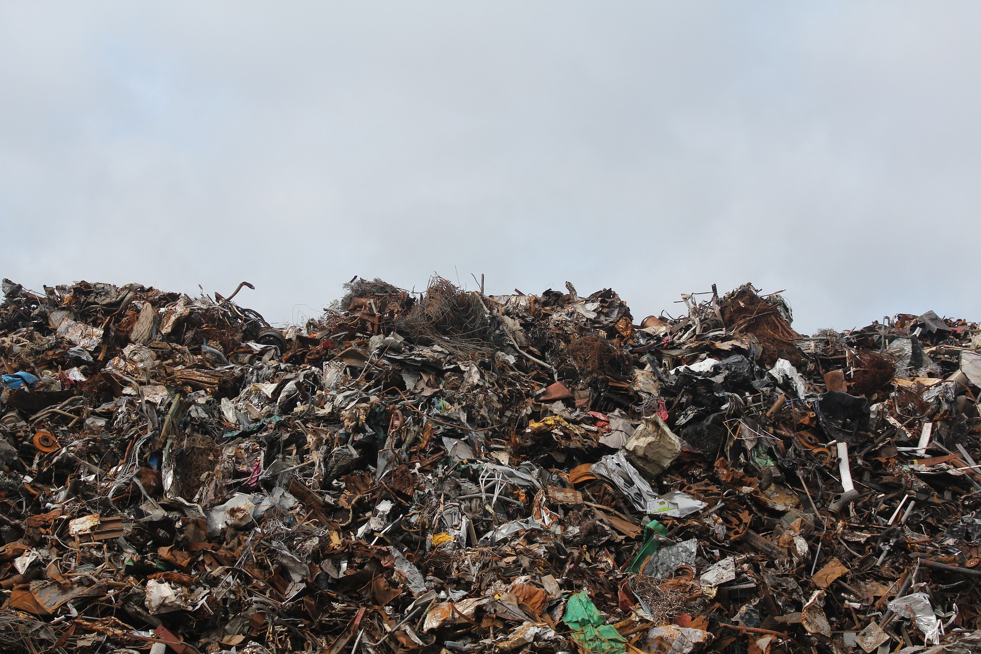 Why Americans Lead The World in Food Waste - Americans waste an unfathomable amount of food. In fact, according to aGuardian reportreleased this week, roughly 50 percent of all produce in the [...]