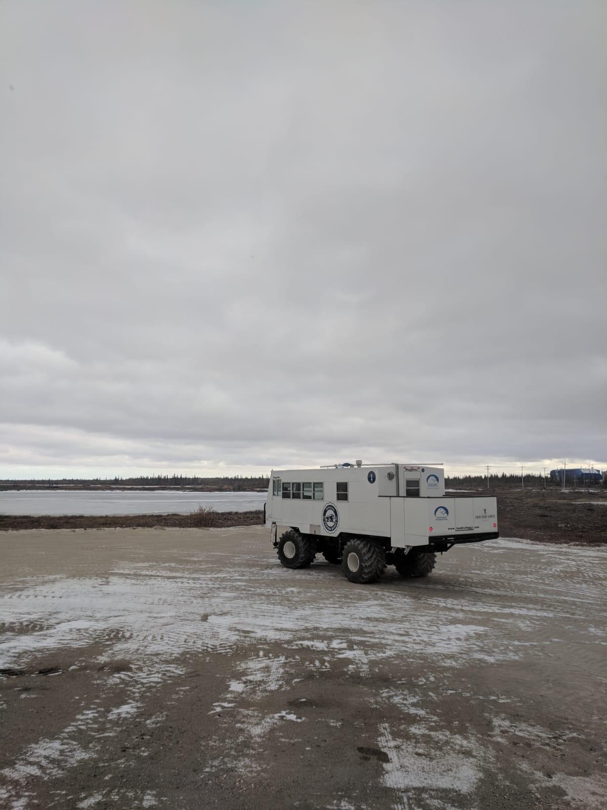 tundra buggy 2.jpg
