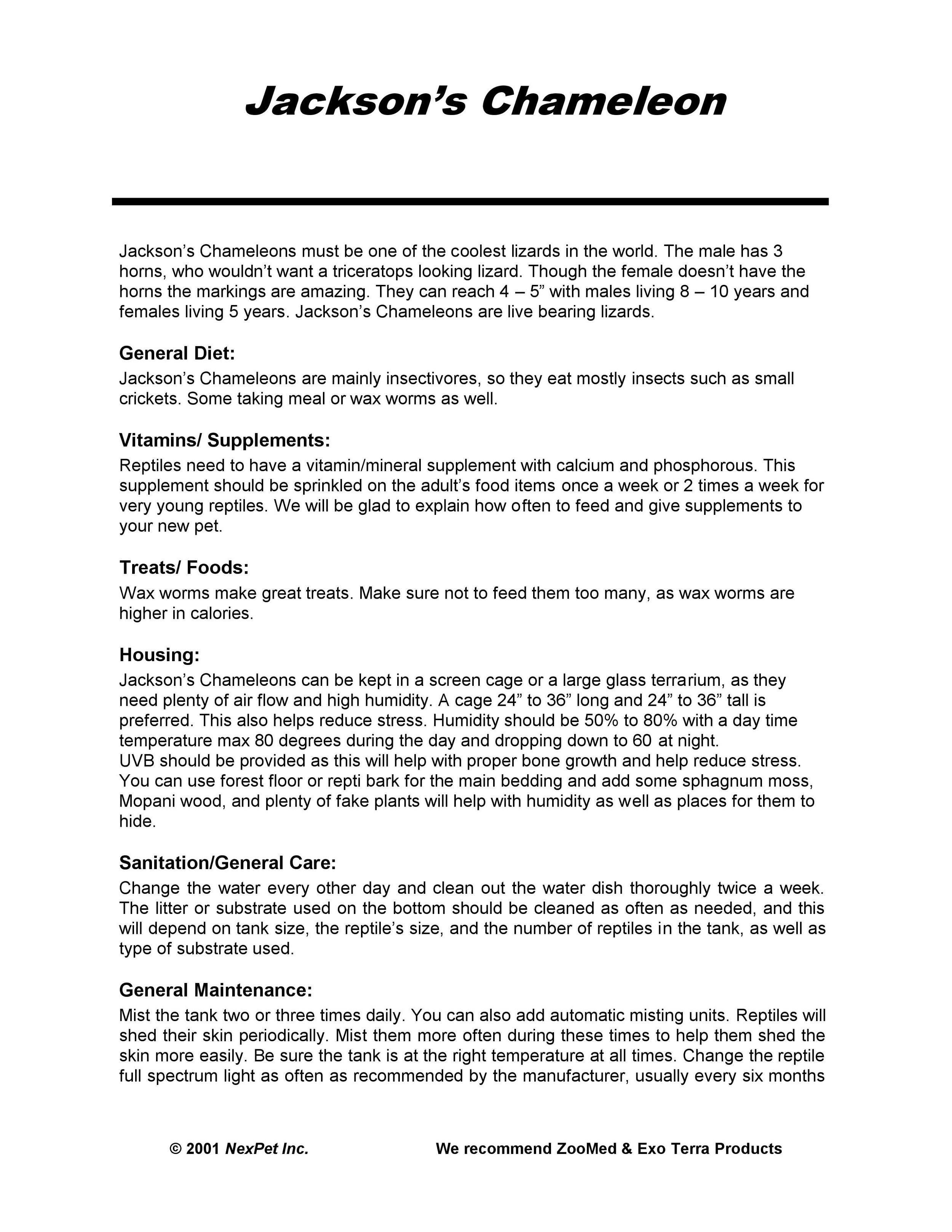 Jackson Chameleon Care Sheet pg1