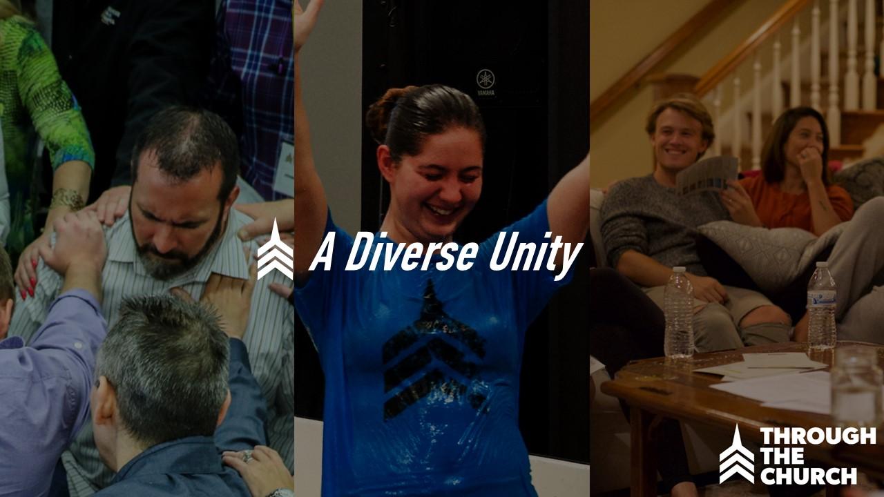 20171119 A Diverse Unity.JPG