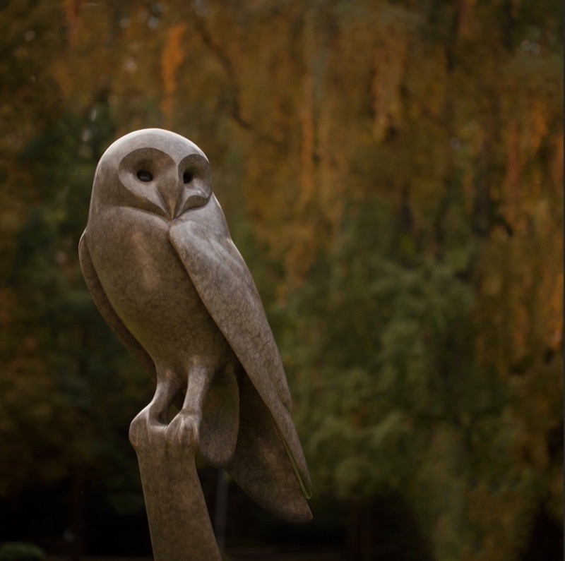 HR THE SODEN COLLECTION Barn Owl.jpg