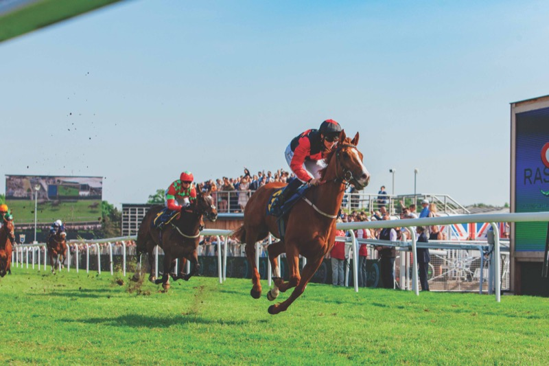 Day at the Races-2.jpg