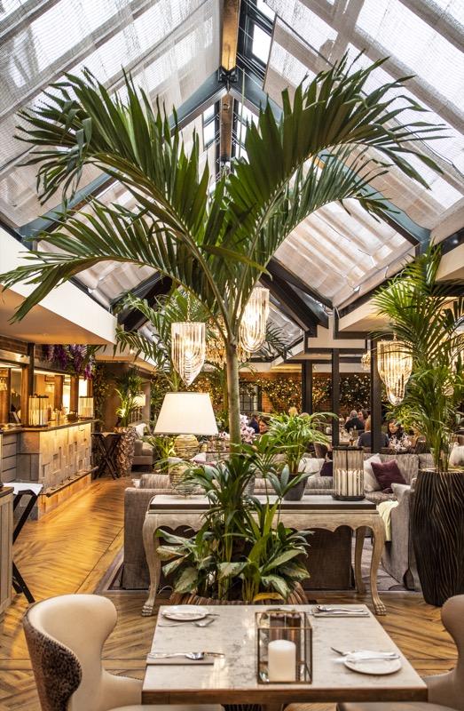 Palm Court Nov18 Extras0001.jpg