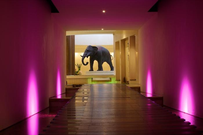 Seaham_Hall_Spa_entrance_with_elephant_4968.jpg