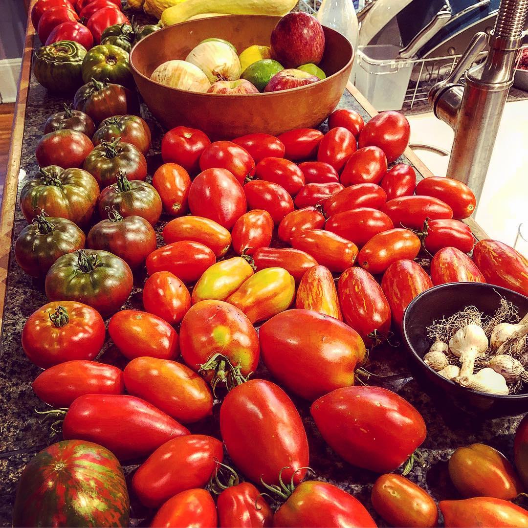 Tomatoes Summer 2018.jpg
