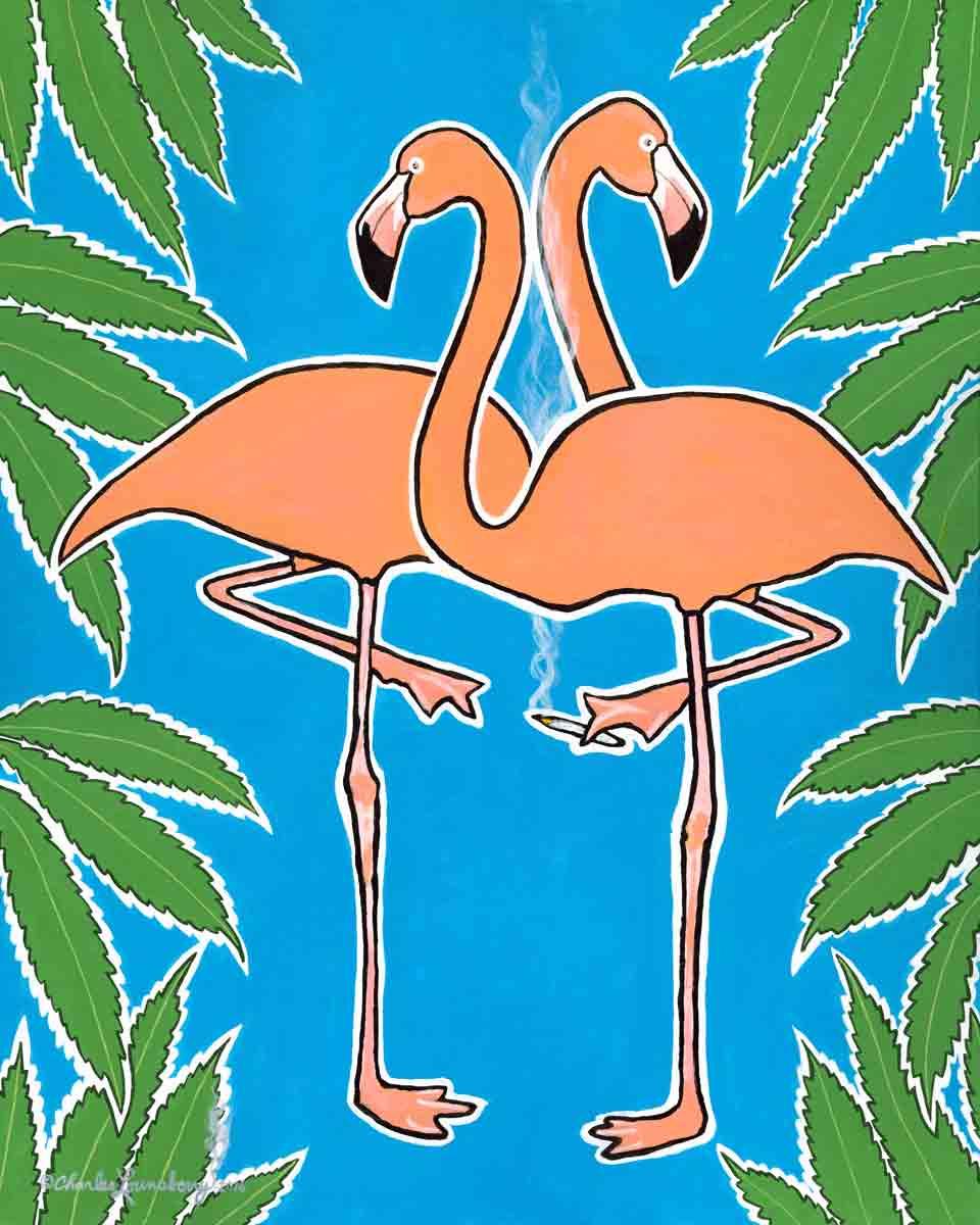 Flamingo Buzz.jpg