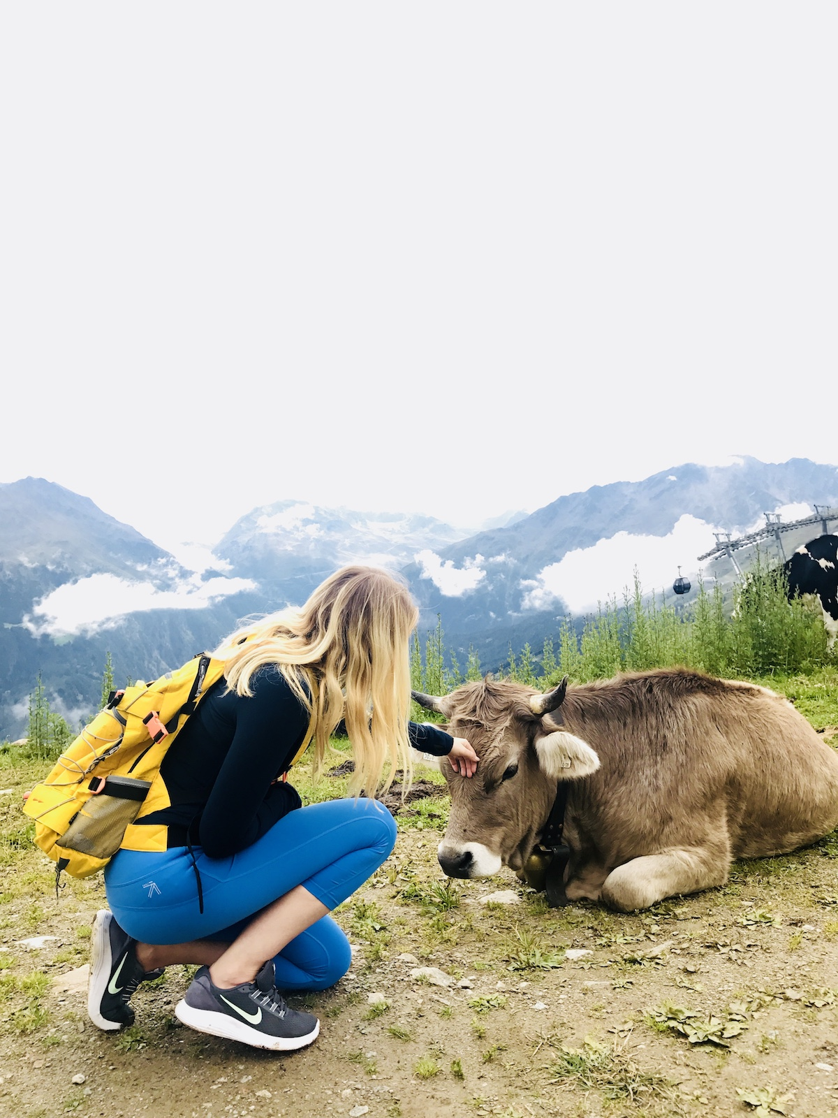AUSTRIA-Petting Cow.jpg