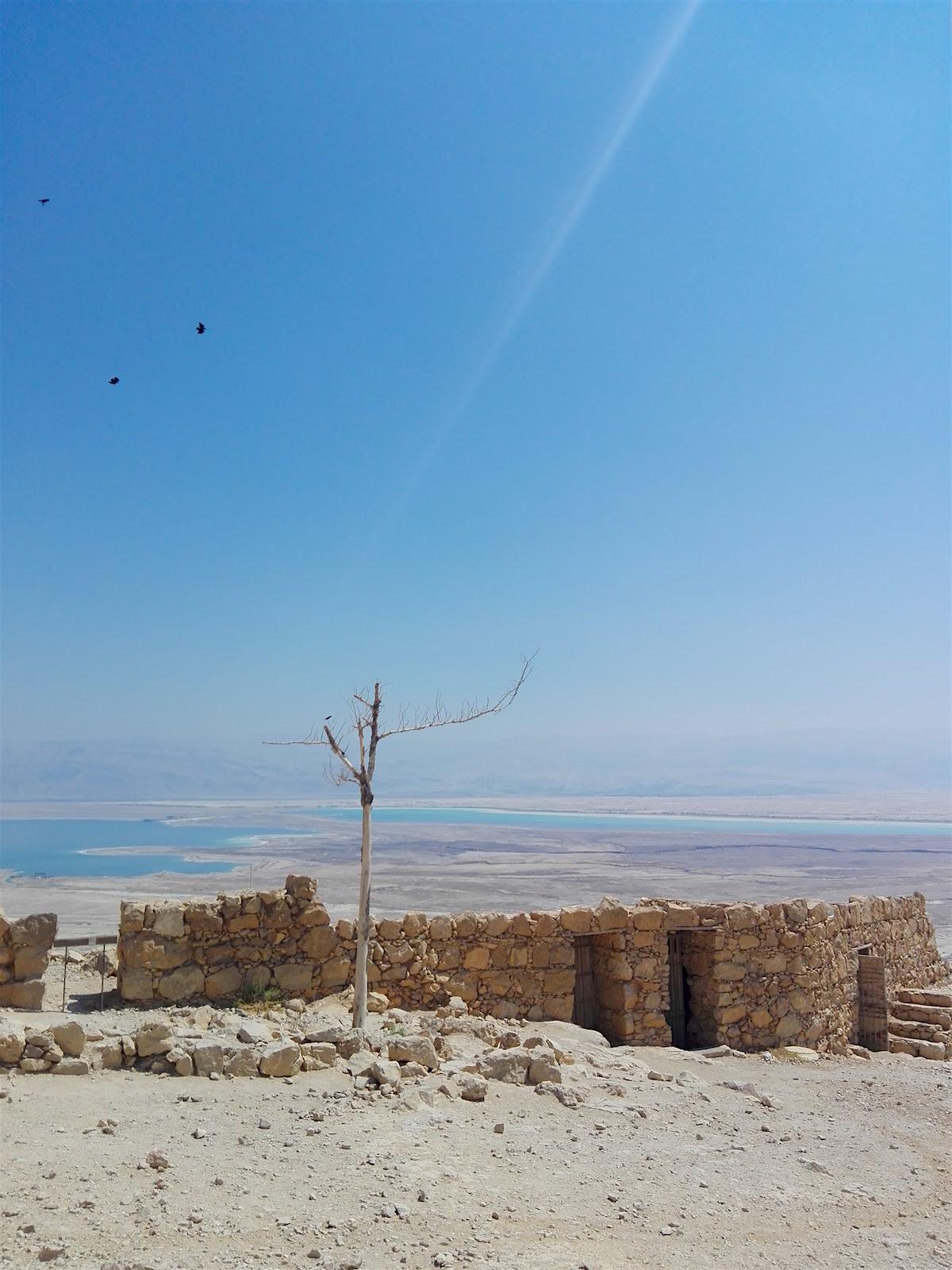 ISRAEL-Masada.jpg