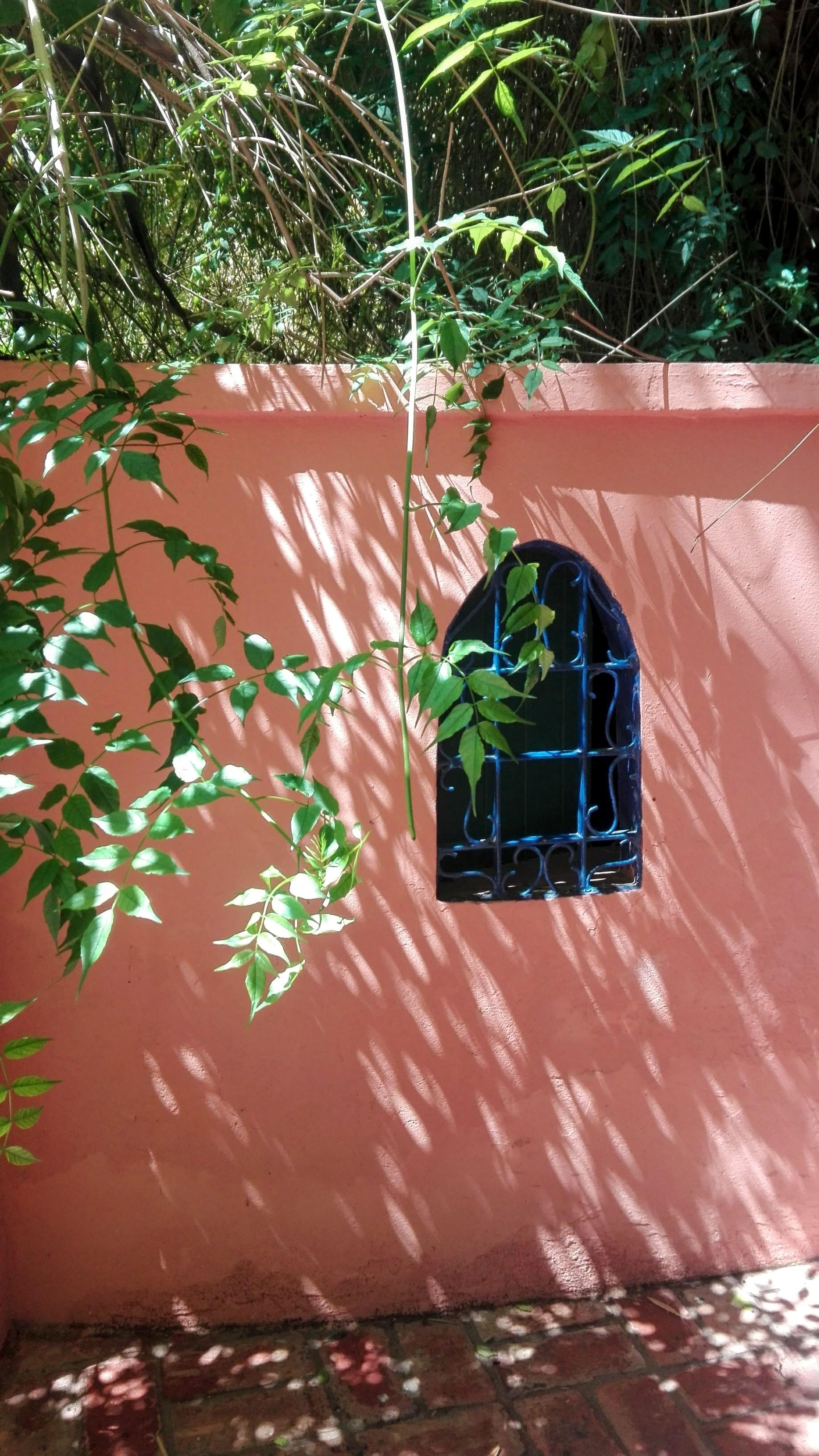 majorelle-window.jpg