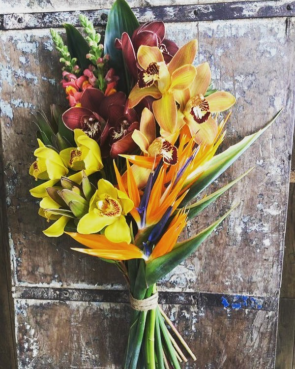 "A ""tropical twist"" bouquet is all you need to inspire customers to give a unique gift to someone special!  Get mixing, here's the recipe:  #cymbidium #yellow #burgundy #bronze #birdofparadise  #snapdragons  #leucadendron  #goldstrike ............................ #flowersofguatemala  #tropicalnouveau  #bedifferent  #instaflowers"