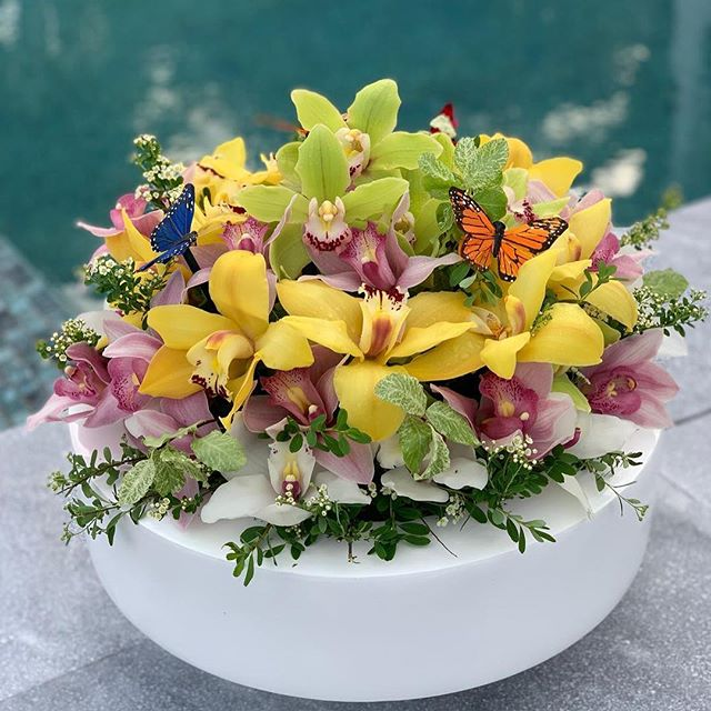 We love how this screams Summer! ☀️ Thank you @passionflowersventures for you Passion for Cymbidiums and your support! #greenflowers #yellowflowers #pinkflowers #cymbidiumcouture #floralentrepreneur