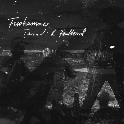 FurhammerTarredFeatherdCDCover.png