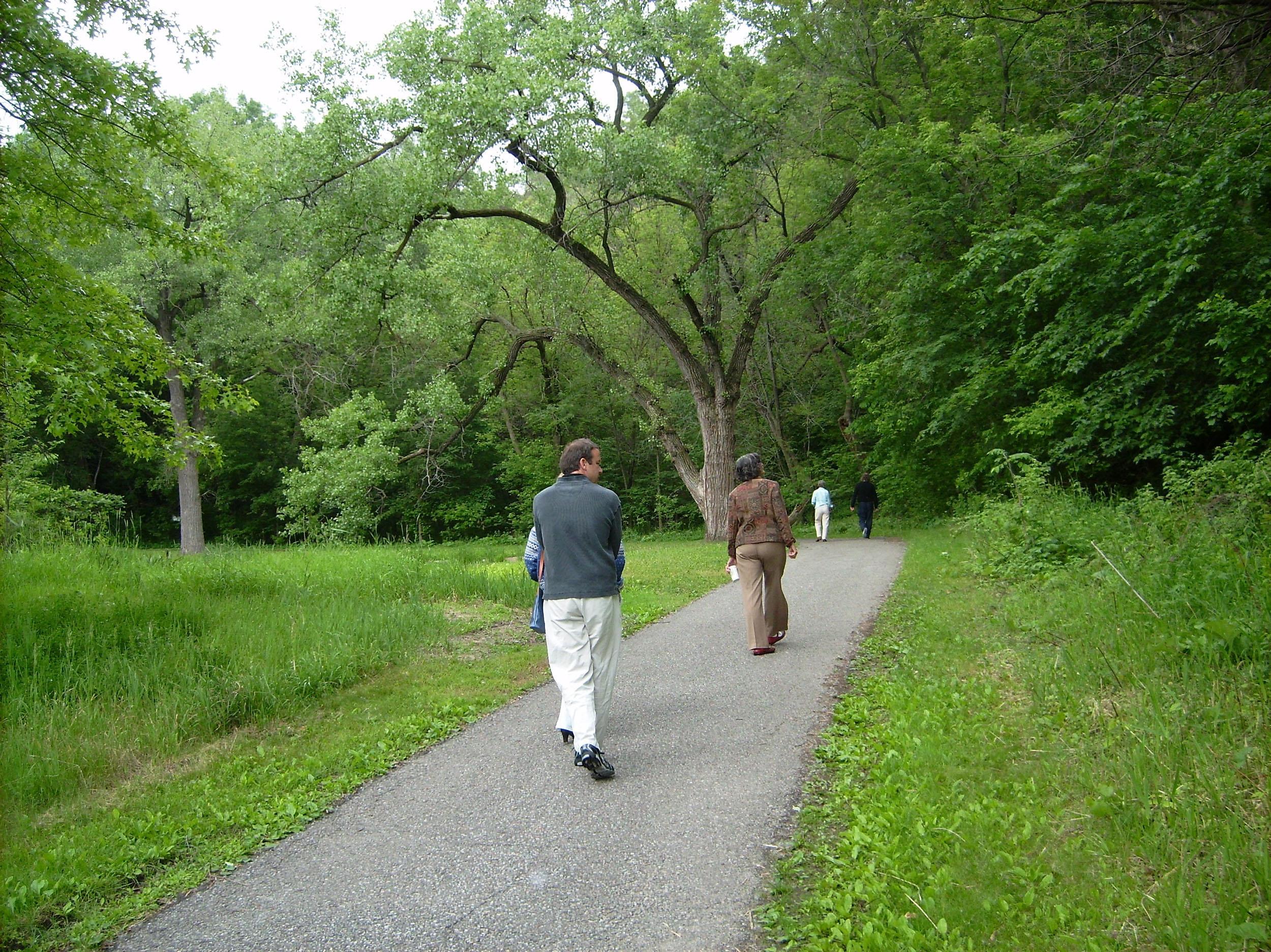 Swede Hollow Park-Vento Trail.3JPG.JPG