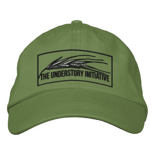 Understory embroidered cap $37