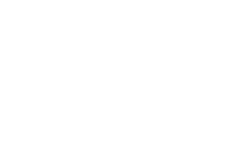 prime_white.png