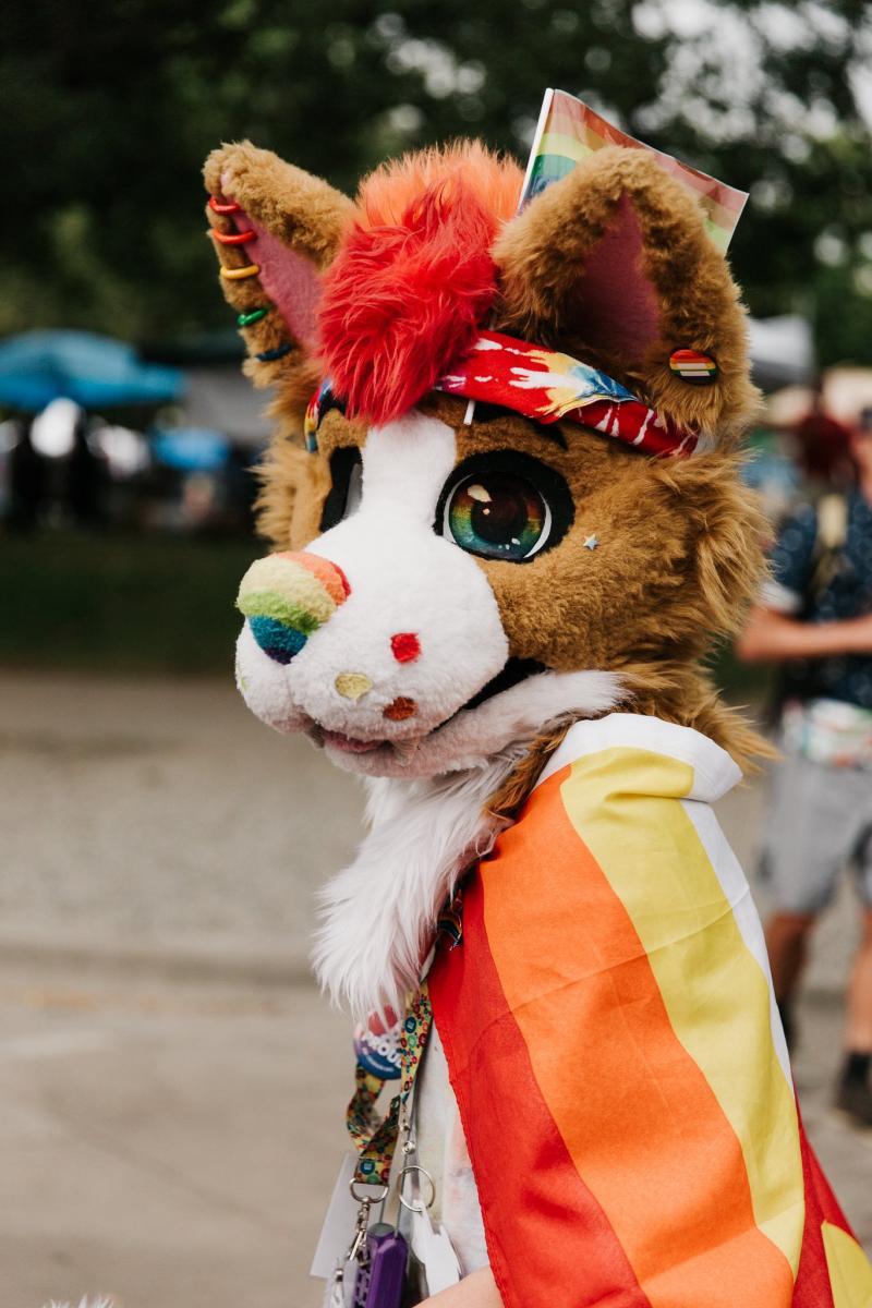 pride2017Furry.jpg