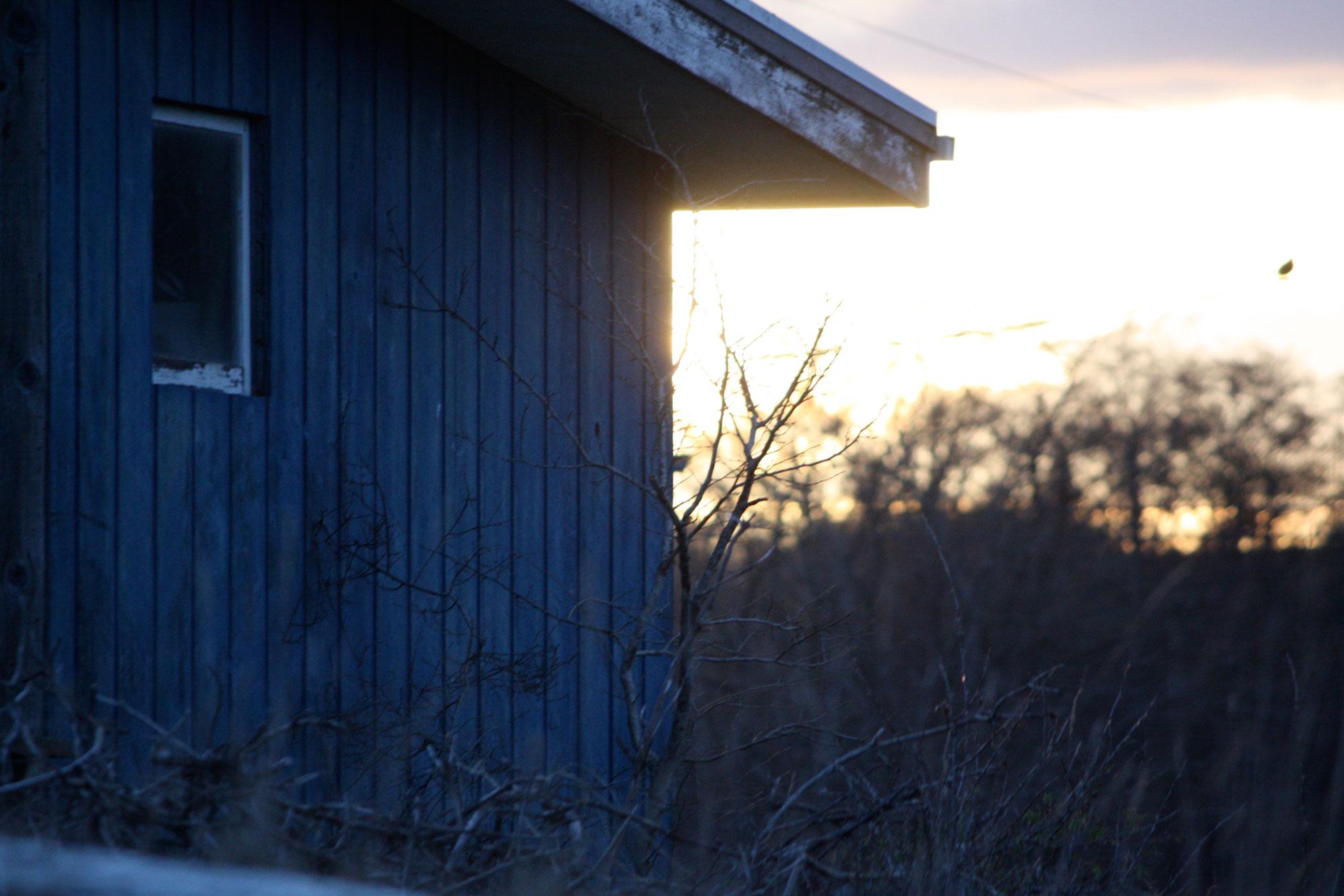 Cool-Blue-Evening-Light-Old-Shack_web.jpg