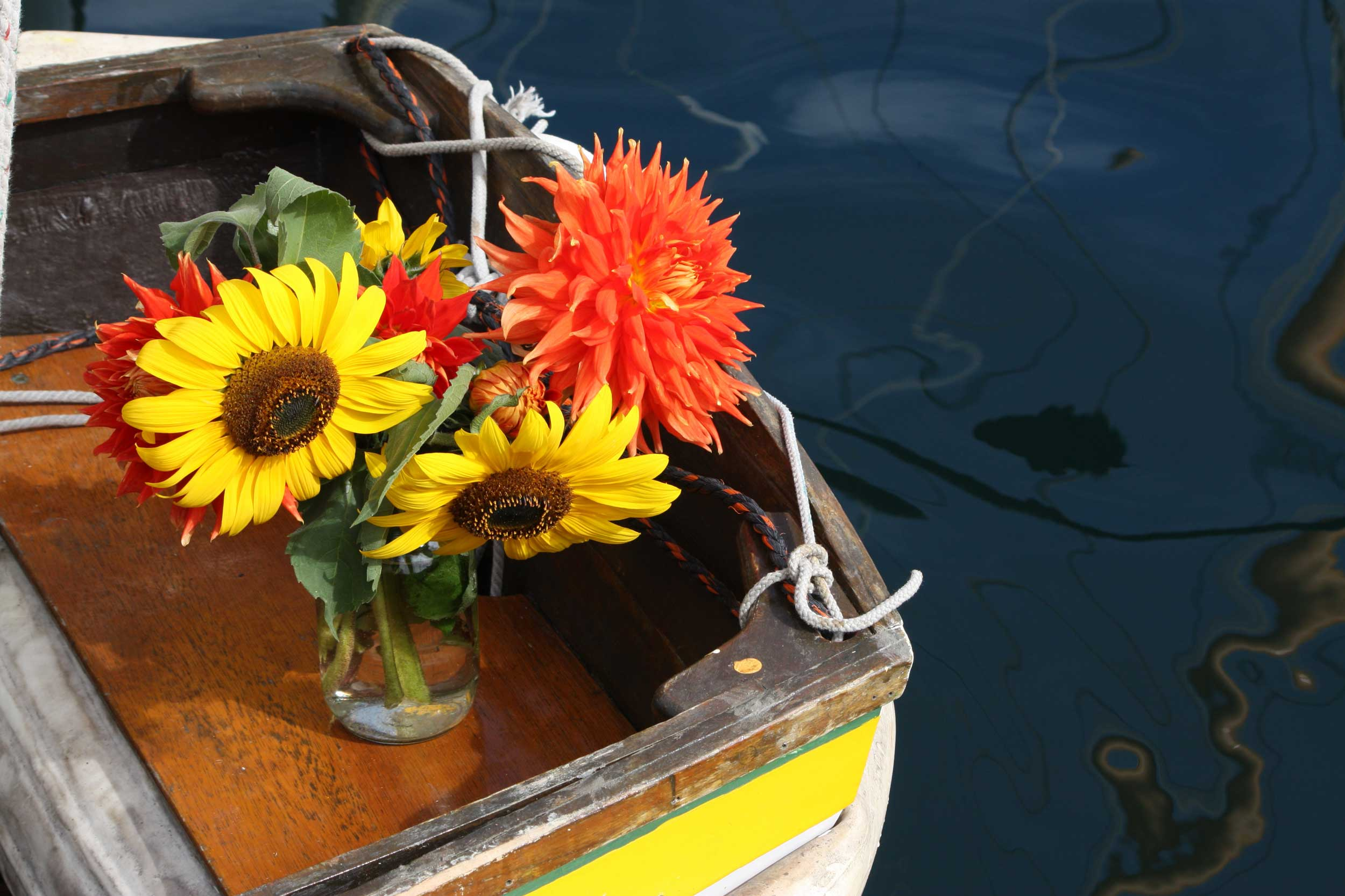 Yellow-Sunflowers-in-Boat_web.jpg
