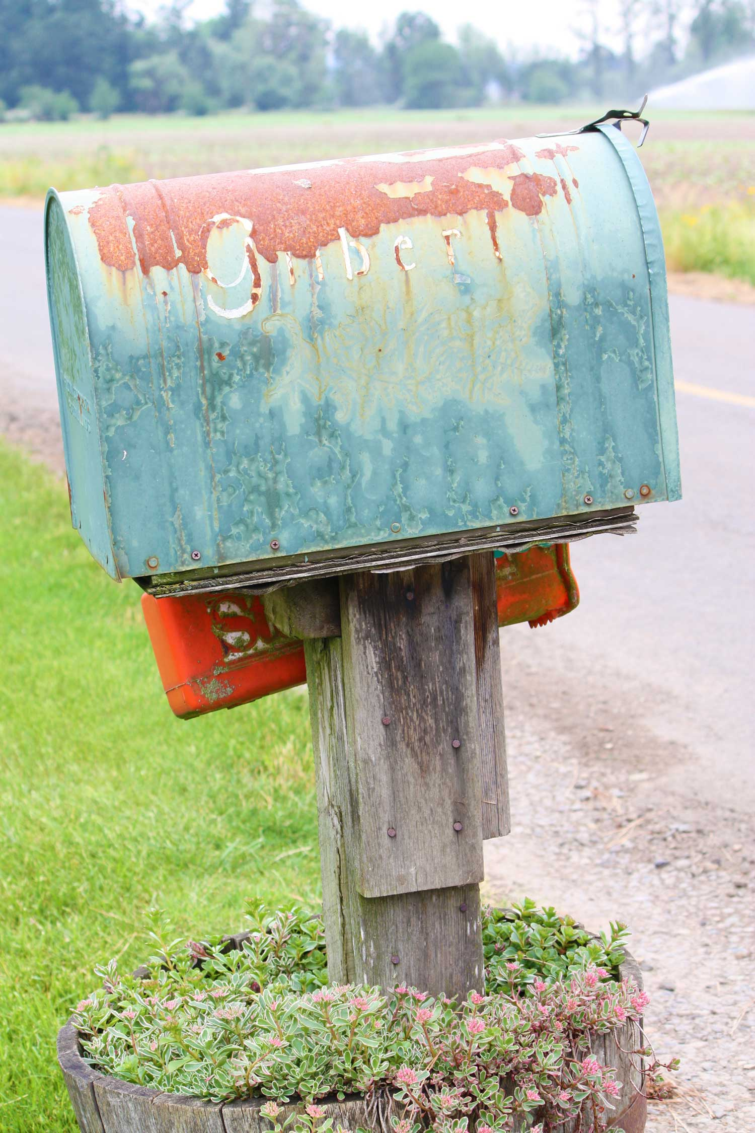 Uncle-Tim's-Mail-Box_adj_web.jpg