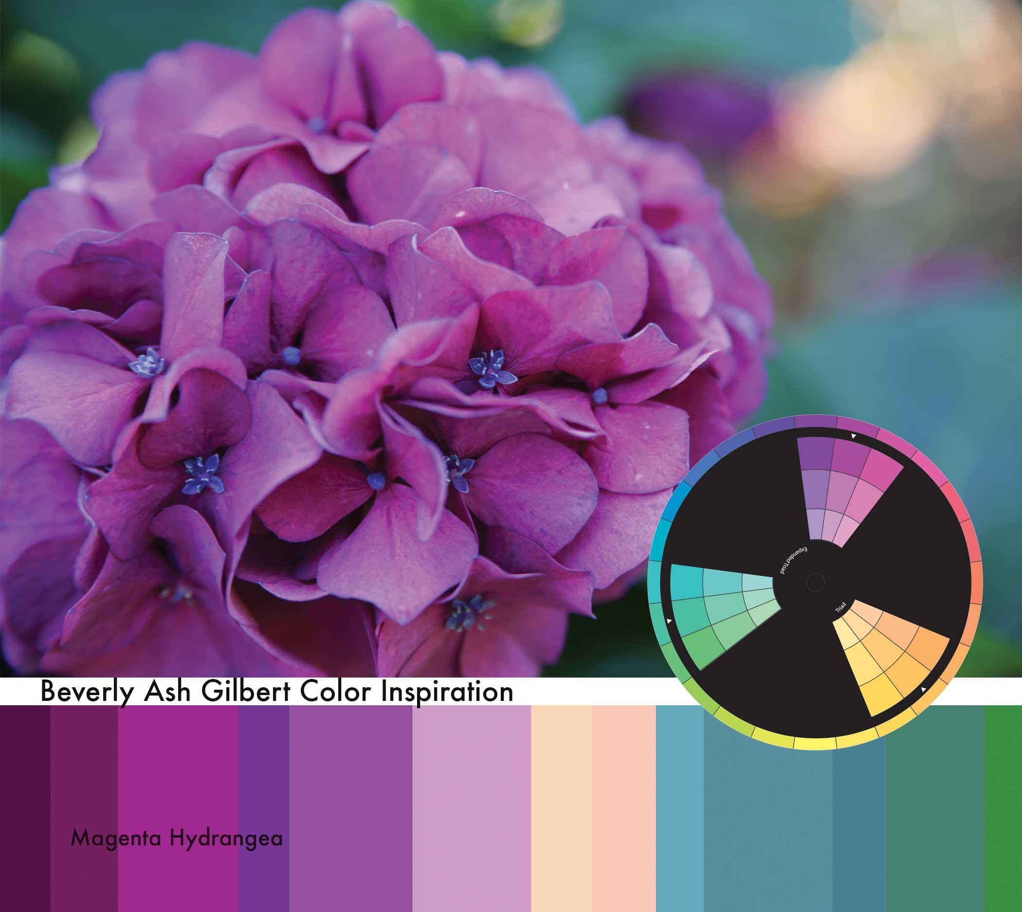 Color-Inspiration_MagentaHydrangea.jpg