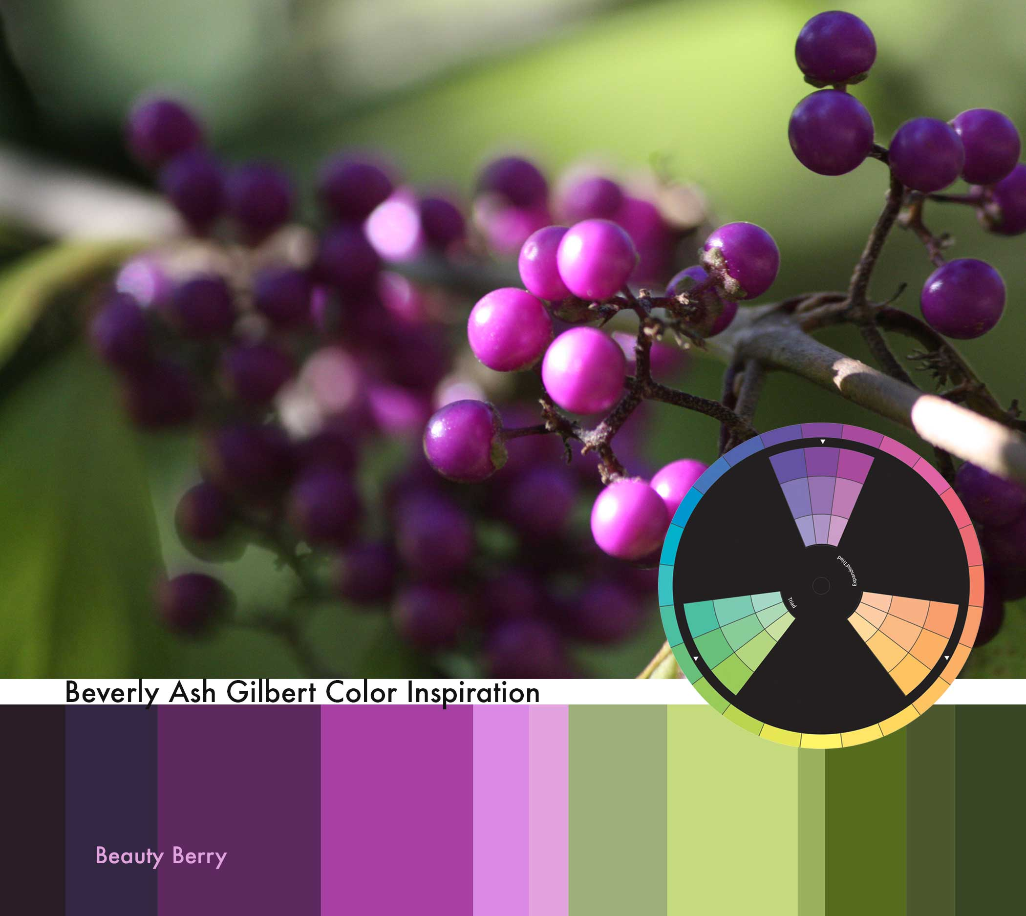 ColorInspiration_BeautyBerry_small.jpg