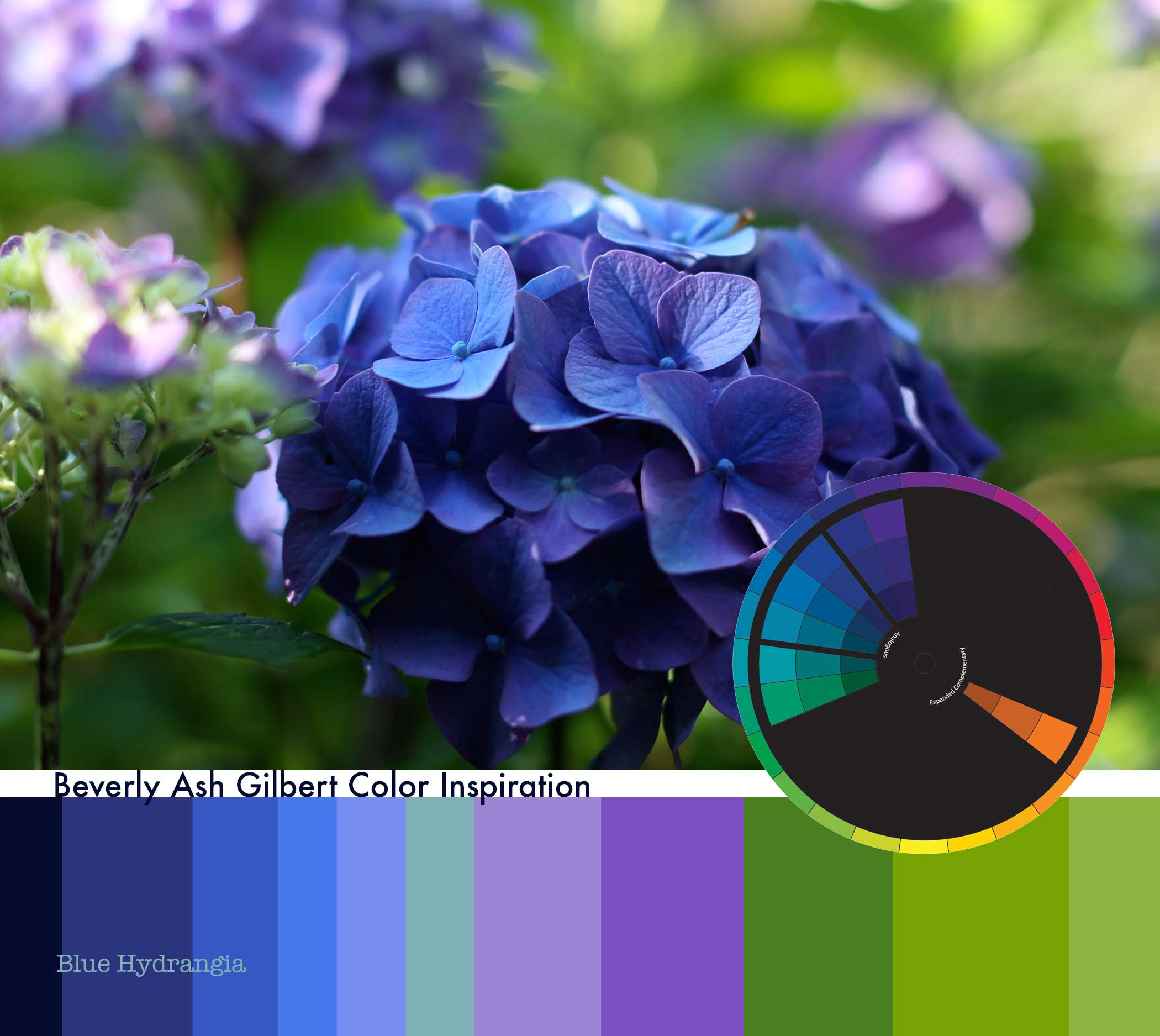 ColorInspiration_BlueHydrangea_small.jpg