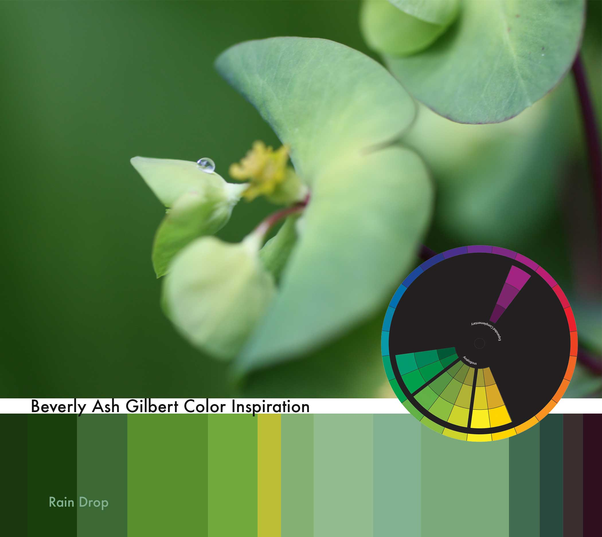 ColorInspiration_GreenRainDrop_small.jpg