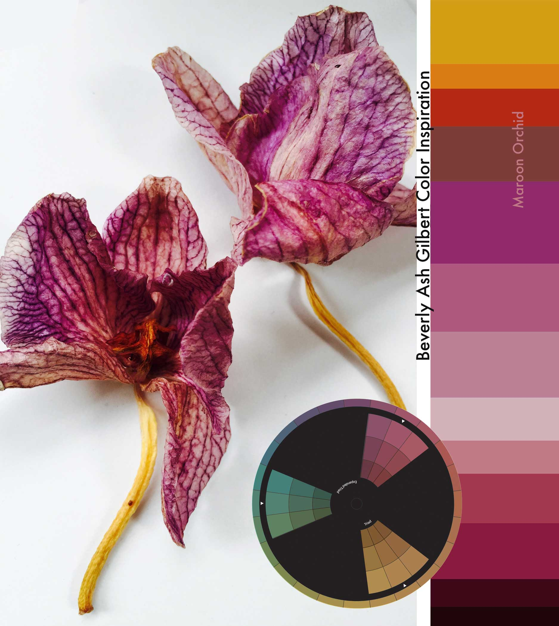 ColorInspiration_MaroonOrchid_small.jpg
