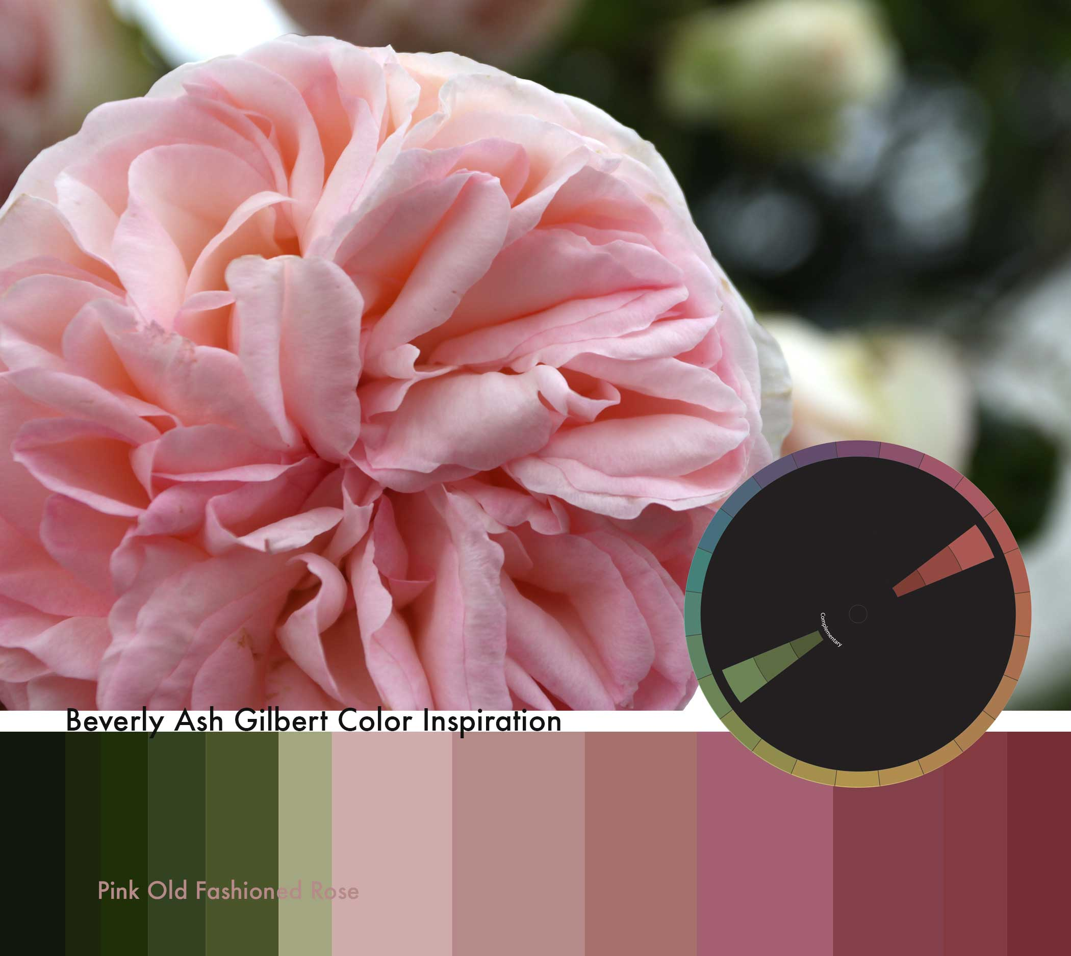 ColorInspiration_PinkOldFashionRose_small.jpg