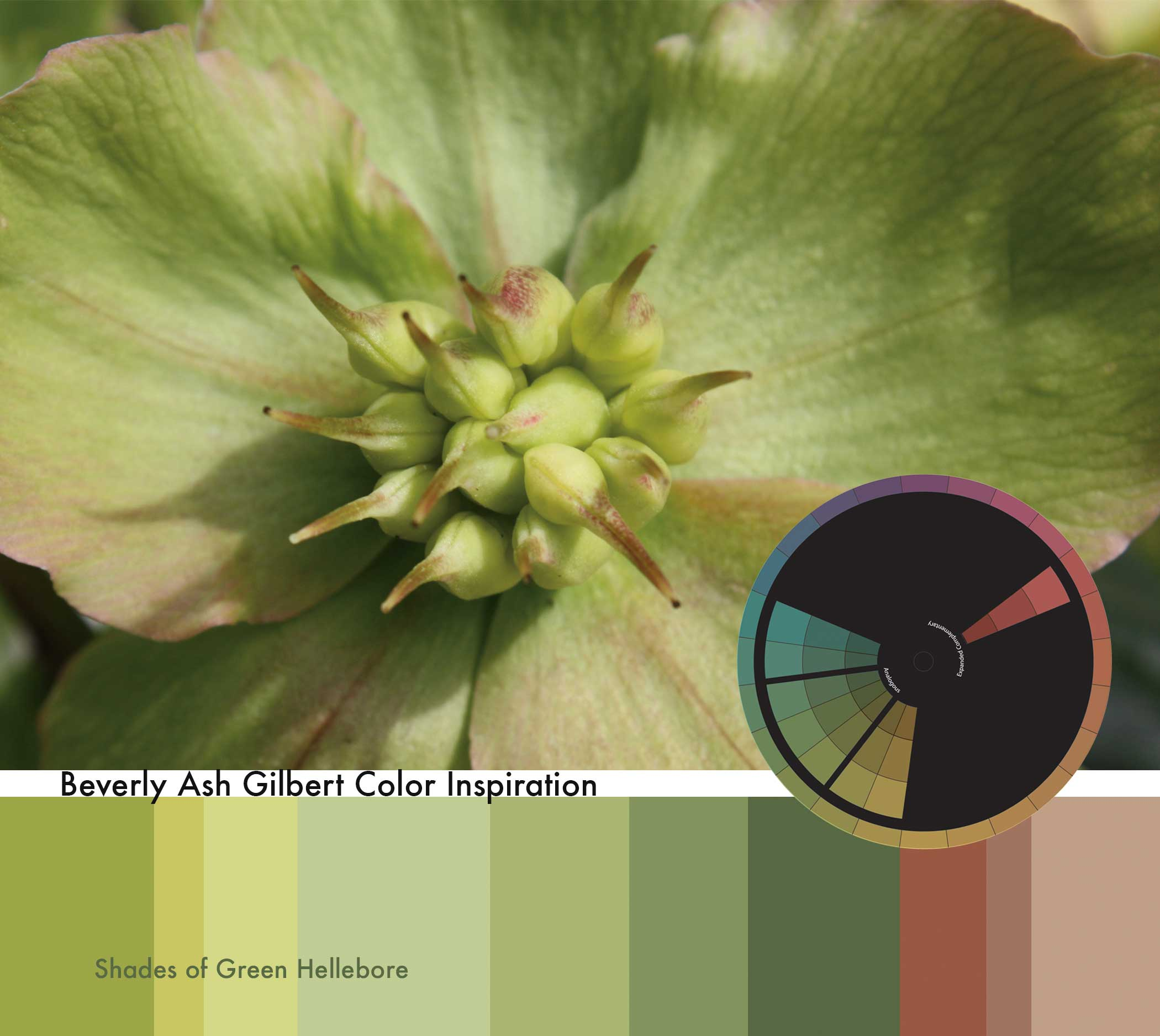 ColorInspiration_ShadesOfGreenHellebore_small.jpg
